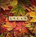 Dream-autumn by  Onyonet  Photo Studios