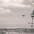 Dreamers Journey Bw by Kathleen Grace