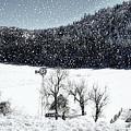 Dreams Of Snow  by Saija  Lehtonen