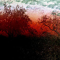 Dreamscape Sunset - Abstract by Ellen Heaverlo