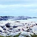 Dreamy Coastal Scene by Kathleen Struckle
