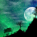 Dreamy Night by Anthony Citro