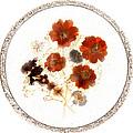 Dried Flower Art by Marilyn Hunt