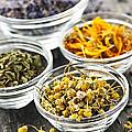 Dried Medicinal Herbs by Elena Elisseeva
