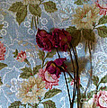 Dried Roses Against The Wallpaper by Marsha Heiken