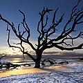 Driftwood Beach At Dawn by Debra and Dave Vanderlaan