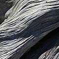 Driftwood Ridges 6 by David Kleinsasser