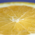 Drip Over An Orange by Ted Kinsman