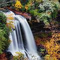 Dry Falls Or Upper Cullasaja Falls by Lynne Jenkins