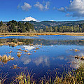 Dry Lagoon Panorama by Greg Nyquist