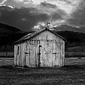 Dry Storm by Ron Jones