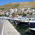 Dubrovnik Cityscape And Harbor by Artur Bogacki