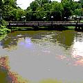 Ducktown Polarized River  by Regina McLeroy