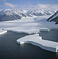 Dugdale And Murray Glaciers Antarctica by Tui DeRoy