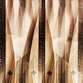 Dulcimer Abstract by Bill Cannon