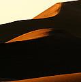 Dune Mood by Alistair Lyne