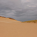 Dunes Edge by Rachel Cohen