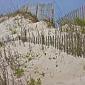 Dunes I by Betsy Knapp