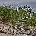 Dunes by Rick Berk