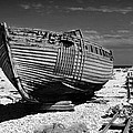 Dungeness Decay by Bel Menpes