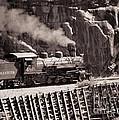 Durango And Silverton Steam Train by Darleen Stry