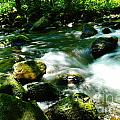 Eagle Creek  by Jeff Swan