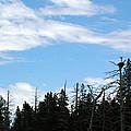 Eagles Nest Lake Tahoe by LeeAnn McLaneGoetz McLaneGoetzStudioLLCcom