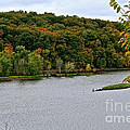Early Autumn Shoreline by Susan Herber