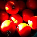 Early Girl Tomatos by Janice Robertson