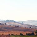 Early Morning In Tuscany by Lena Khachina