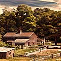 Early Settlers by Lourry Legarde