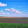 Early Spring Farmland by Debbie Portwood