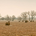 Earlying Morning Hay Bails by James Steele