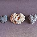 Earth's Hearts by Elena Kolotusha