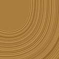 Earthy Swirls by Bonnie Bruno