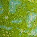 Easter Egg Green Macro 1 by John Brueske