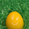 Easter Egg Yellow 3 Smile by John Brueske
