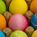 Easter Eggs Carton 2 A by John Brueske