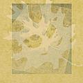 Ecru Leaf by Ann Powell
