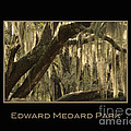 Edward Medard Park by Nancy Greenland