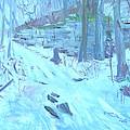 Eel Bay Trail by Robert P Hedden