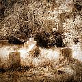 Eerie Cemetery by Sonja Quintero