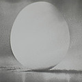 Egg Of The Vernal Equinox by Tom Luca