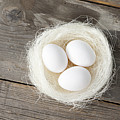Eggs In Nest On Wooden Counter by Stefanie Grewel