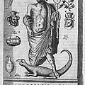 Egyptian God Anubis, 17th Century by Middle Temple Library