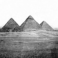 Egyptian Pyramids - C 1901 by International  Images