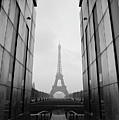 Eiffel Tower And Wall For Peace by Cyril Couture @