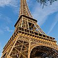 Eiffel Tower by David Freuthal