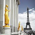 Eiffel Tower From Trocadero by Elena Elisseeva