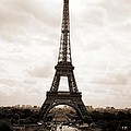 Eiffel Tower by Pat Purdy